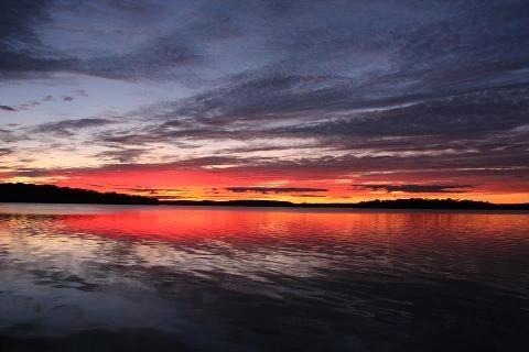 Rice Lake , Ont.