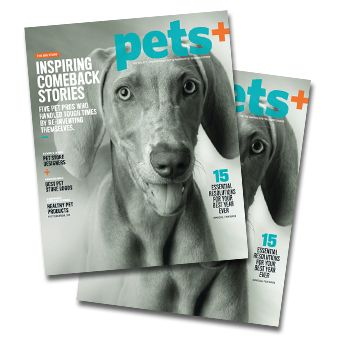 Check out Pets+ magazine's 2017 Charitable Honor Roll, which includes a donation by Pet Sitters International.