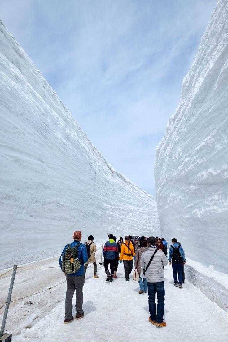 立山黒部アルペンルートの室堂へ。立山の裾野に広がる室堂平と、19メートルの雪の壁。