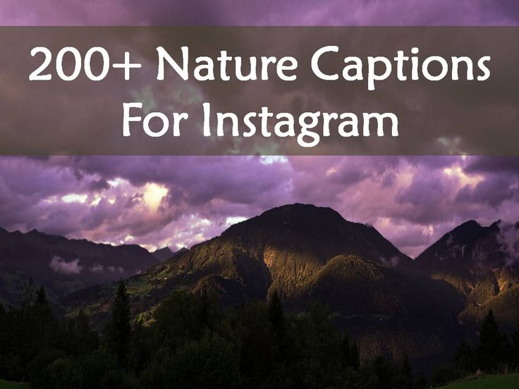 Here is our collection of '200+ Nature Captions For Instagram'. Find more at The Quotes Master, a place for inspiration and motivation.