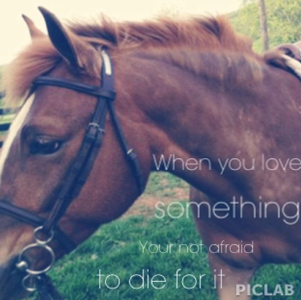 I felt this way about my horses growing up.  I vividly remember the anguish of being told my favorite mare had died while foaling.  My parents still talk about it to this day... :(     Creatures that touch your very souls.