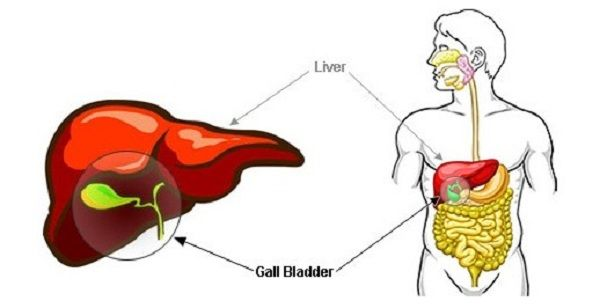 This Drink Will Help You Get Rid Of The Stone In Your Gallbladder - See more at: http://www.healthyfoodhouse.com/this-drink-will-help-you-get-rid-of-the-stone-in-your-gallbladder/#sthash.KLEuxMyl.dpuf