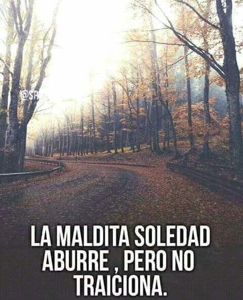 La maldita soledad aburre, pero no traiciona.