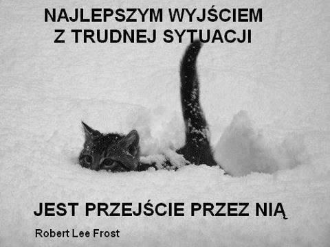 Przesłała: Anna Badecka  https://www.facebook.com/Ankazcmentarza