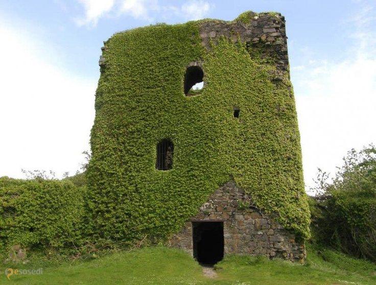 Замок Данолли – #Великобритания #Шотландия (#GB_SCT) Руины замка XIII века постройки.  ↳ http://ru.esosedi.org/GB/SCT/1000443556/zamok_danolli/