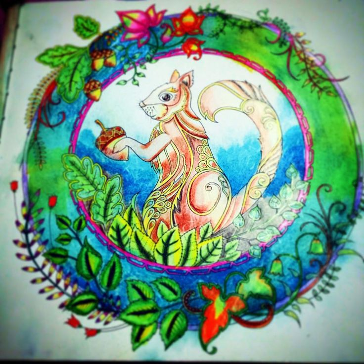 Enchantedforest Johannabasford Coloringbook Squirrel