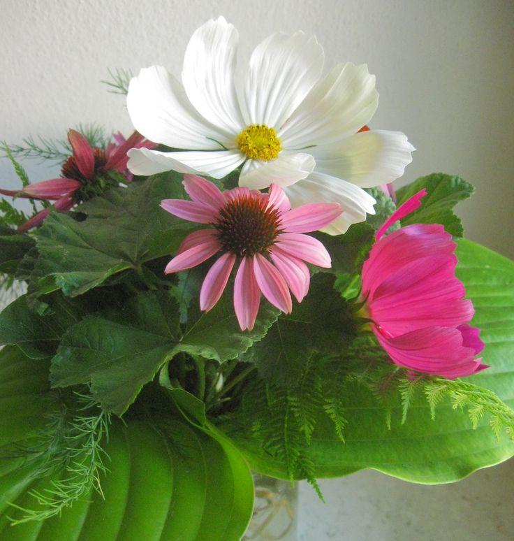 #bouquet di #cosmos, #echinacea, hosta, malva, felci e asparagi
