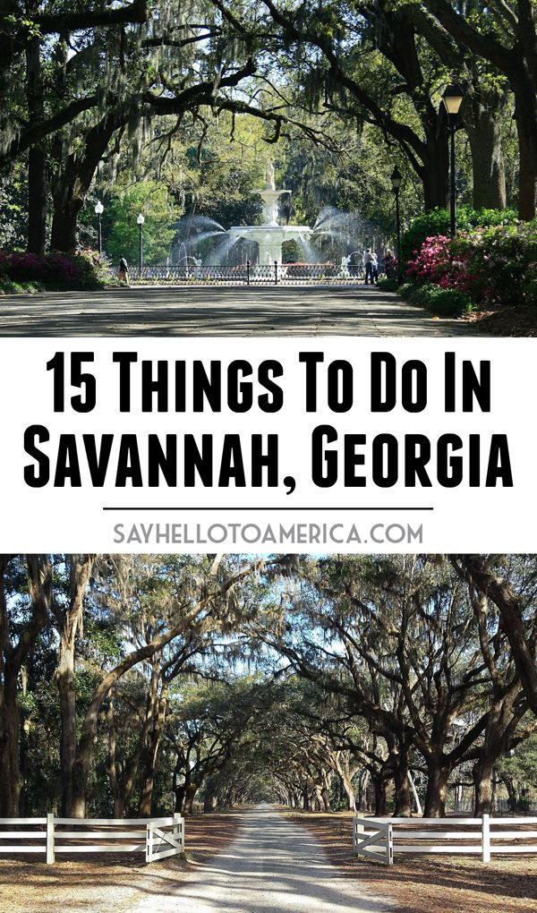 The top 15 things to do in Savannah, Georgia. Click to see the list or pin for later!