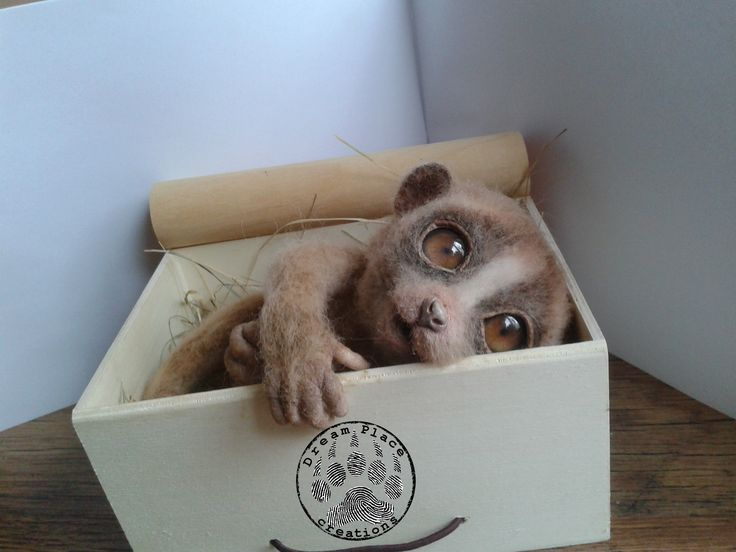 Lemur needle felting ooak  #lemur #lori #needle #felted #felting #handmade #art #animals #ooak #critters