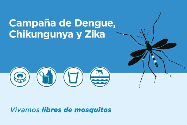 El Ministerio de Salud comenzará la campaña contra el dengue: Durante la reunión de gabinete, el ministro Mascarello instruyó al equipo…