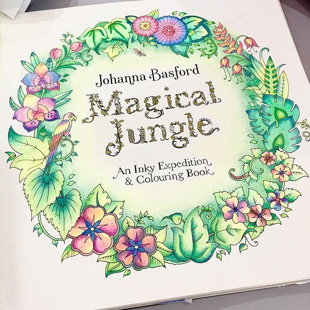 Johanna Basford Coloring Book Secret Garden Color Magic Art Elements Adult Books Combos Schemes