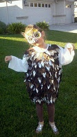 owl costume #halloween: Owls Costumes, Awesome Owls, Costumes Halloween, Bats Costumes, Costume Halloween