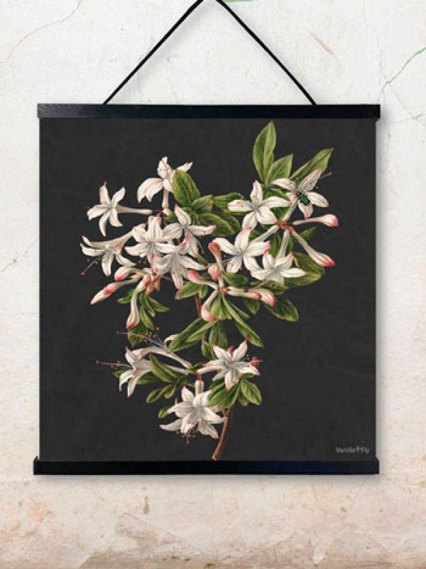 Azalea poster  - wallhanger is sold separately