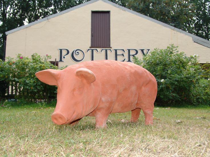 Full size garden pig.