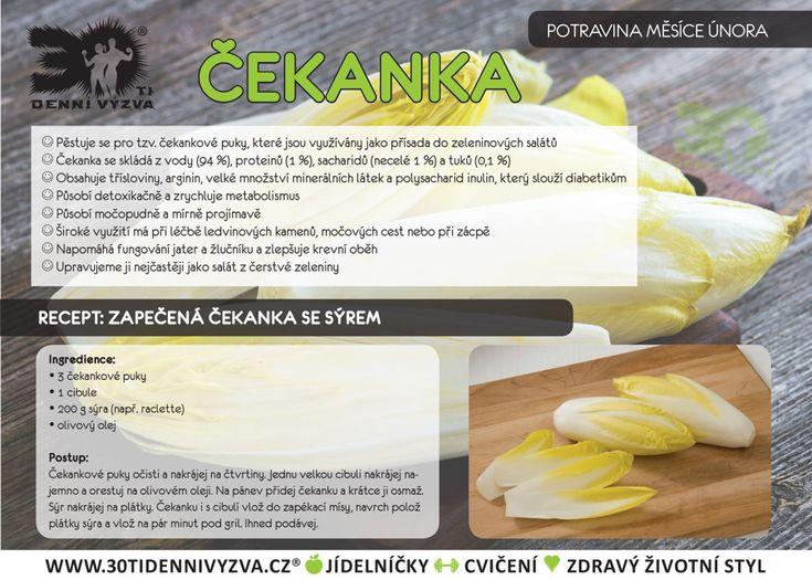 ÚNOR - Čekanka - 30ti denní výzva