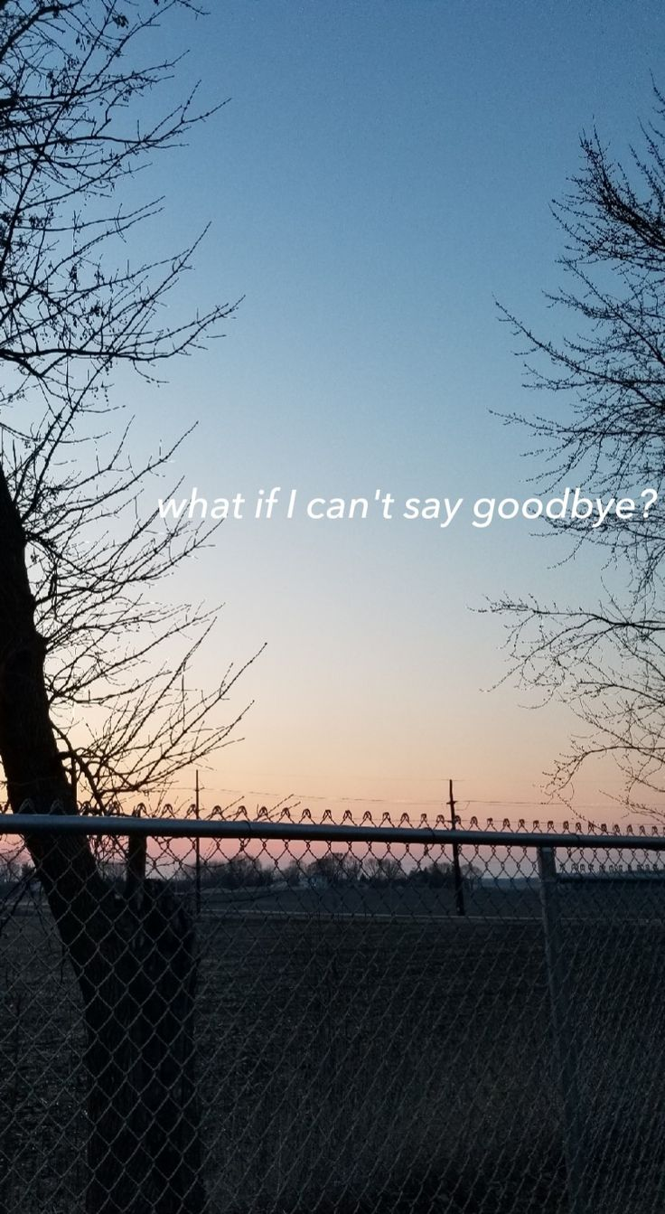 what if I can't say goodbye? Poem line and photography by Kiah Raven.