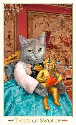 Bohemian Cats by Baba Studio