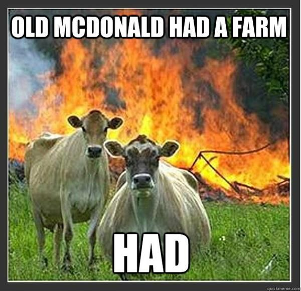 Revenge of the bovine...: Make Me Laughing, Animalmemes, Funny Pictures, Humor, So Funny, Animal Farms, Burgers King, Cows, Animal Memes