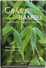 Skapa en oas: Bambuväxter istället för staket