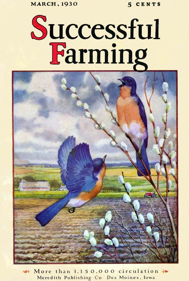 """""""Successful Farming"""" magazine - March 1930 - Cover by Walter Haskell Hinton"""