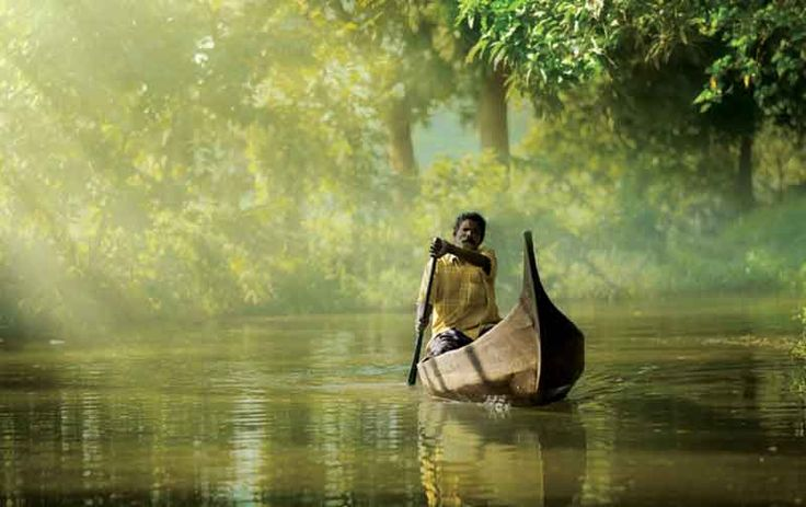 The peaceful and enchanting experience in Kerala of the tourists has sent word to people all over the globe which has increased the flow of tourists. All this has put Kerala  on the map making it one of the best holiday destinations among all kinds of travelers, both luxury seekers and those intimidated by nature.