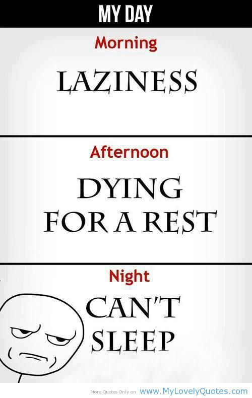 funny quotes | funny quotes pictures sayings night morning afternoon funny quotess