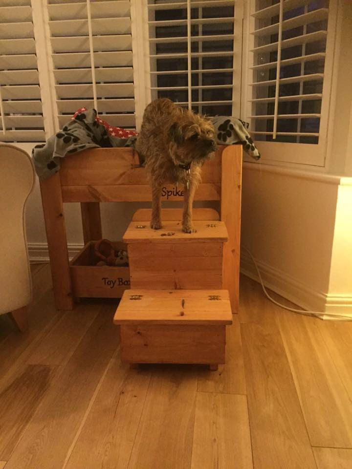 Handcrafted wooden dog bed, the Spike Curtain Twitcher Raised Dog Bed. by craftystuffjoinery on Etsy