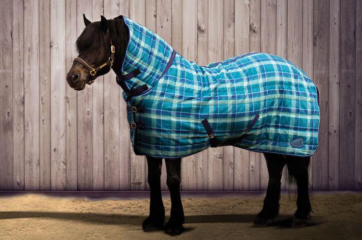 Die #Quiltmasta #Stalldecke mit #Halsteil und #120g #Thermofüllung macht dein #Pferd zum Hingucker schlecht hin machen. Diese #Pferdedecke mit #Karomuster wird dein Pferd in der #Box warm halten und schützt gegen Abrieb. #masta #englishequetstrian #english #equestrian #reiten #reiter #reitausrüstung www.englishequestrian.com