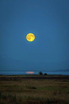 Art Calapatia - Moonrise Reflection 1