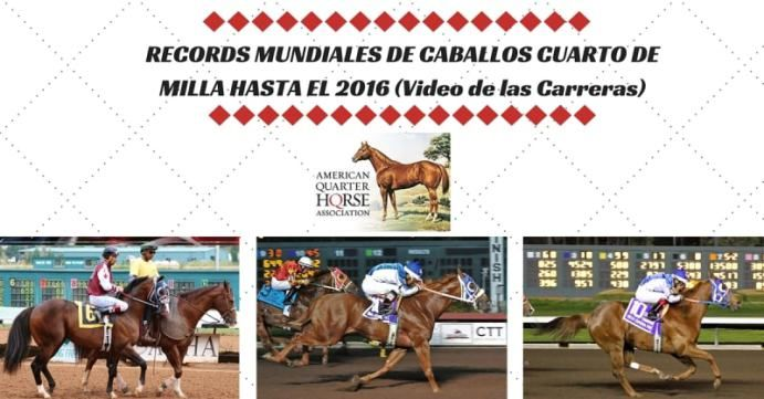 Records Mundiales de Caballos Cuarto de Milla Blog Allens Cash Double Down Special First Moonflash Gone To The Mountain Neversaynever Quarter Mile Horses World Records Record Mundial de Carreras de Caballos Record Mundiales de Caballos Cuarto de Milla Strike It Quick Travel Plan Valiant War Hero