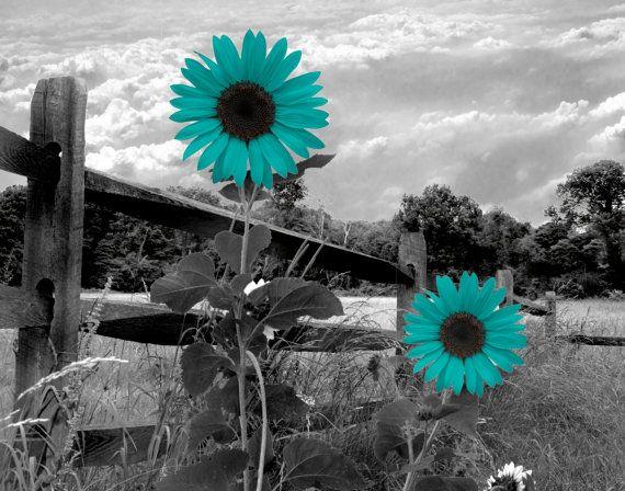 Black White Teal Sunflower Landscape Wall Art By
