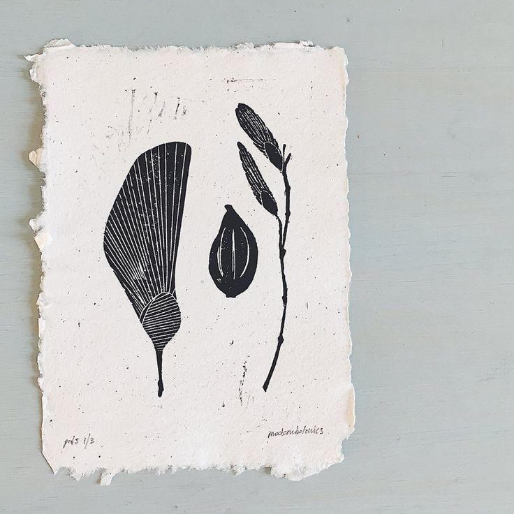 pods collection linocut art print on handmade paper