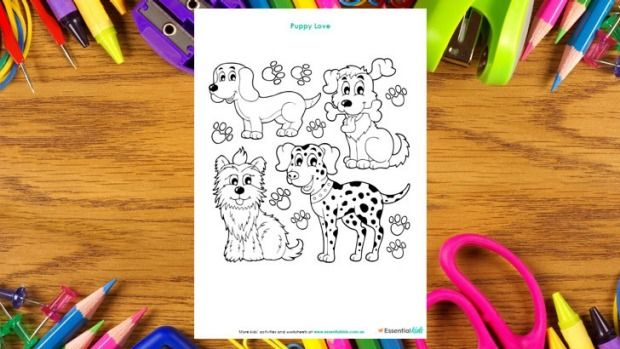 Puppies colouring page http://www.essentialkids.com.au/activities/colouring-pages/puppies-colouing-page-20151016-gkbau0