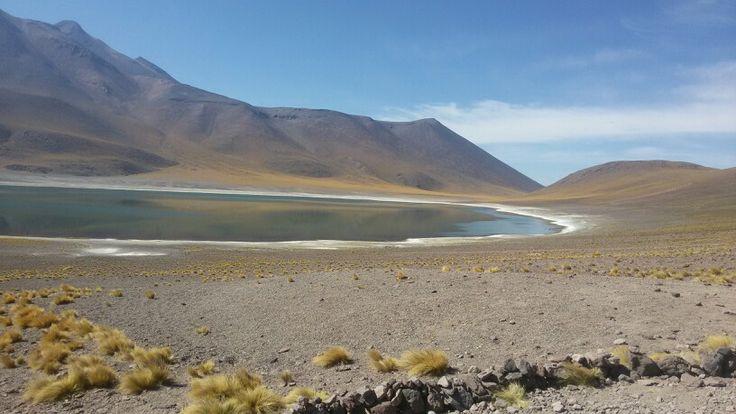 Lagunas altiplanicas,  San Pedro de atacama,  Chile