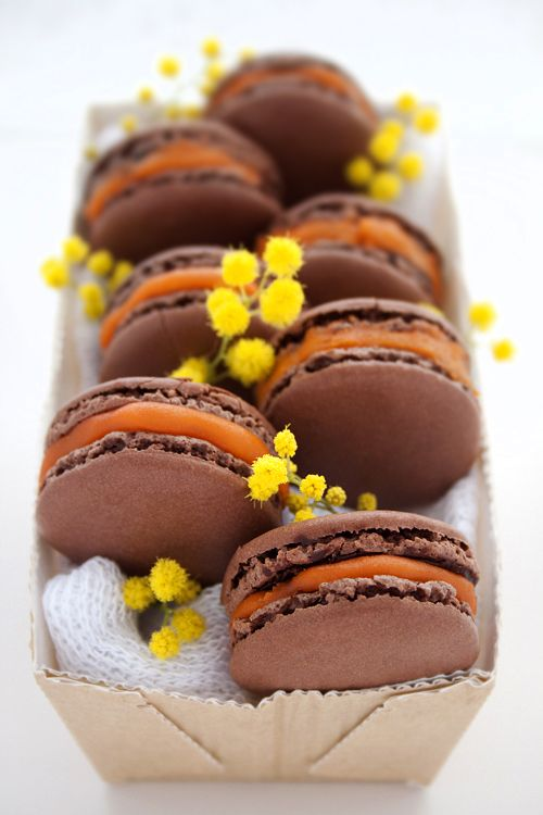 chocolate and passion fruit sorbet macarons