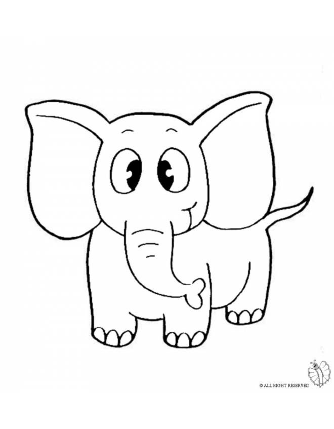 Disegno Di Elefante Da Colorare Per Bambini Disegno Di Elefante