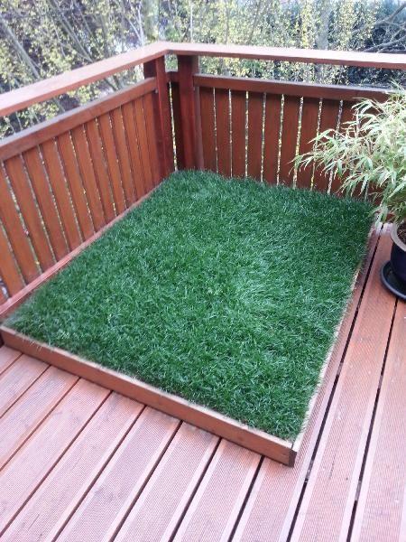die besten 25 katzengras ideen auf pinterest katzengarten selbermachen katzen spielzeug und. Black Bedroom Furniture Sets. Home Design Ideas