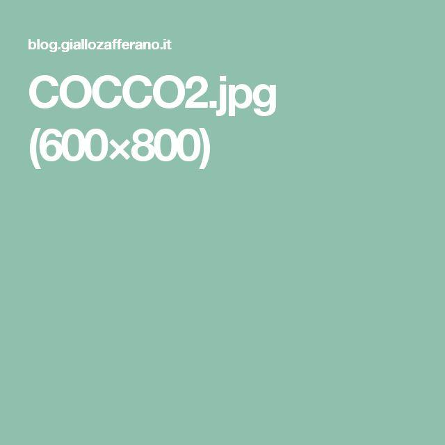 COCCO2.jpg (600×800)