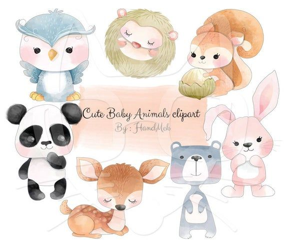 Cute Baby Animals Clip Art Animals Water Color Clipart Instant Download Png File 300 Dpi In 2020 Animal Drawings Cute Baby Animals Baby Animals