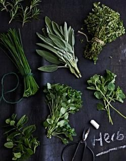 List of Medicinal Herbs and their uses
