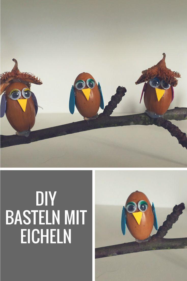 25+ beste ideeën over Basteln mit eicheln op Pinteres