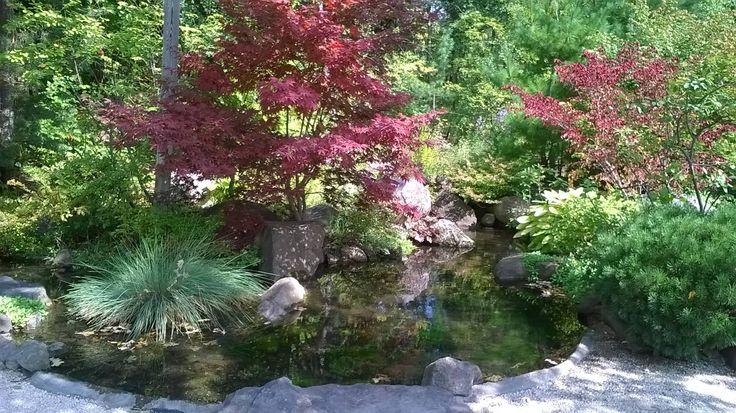 Anderson Japanese Gardens Rockford Il Sept 2015