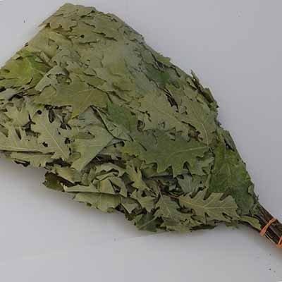 """Leafy Oak Tree Twigs - """"Oak Venik""""-A must have for the Russian Banya."""