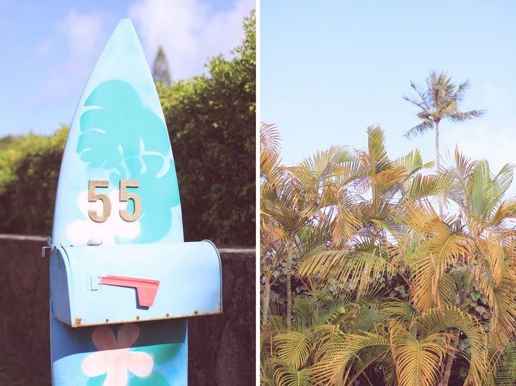 Emilee Anne wearing Tara Starlett Hawaiin Knot Top // Wet Swimwear High-Waisted Bikini Bottoms // Forever 21 Marine Halter Dress // Olive + Piper Peach and White Daisy Tassel Drop Earrings // Celine Sunglasses