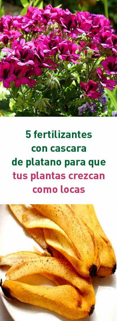 5 fertilizantes con cascara de platano para que tus plantas crezcan como locas #fertilizante #abono #natural #plantas #flores #cascaras
