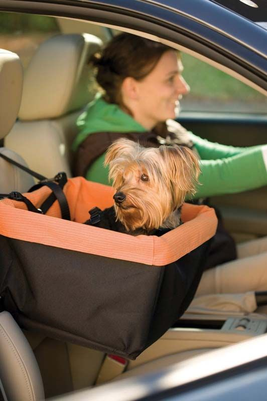 5 Best Car Seats for Dogs - Top Dog Tips.  I'm so getting this for Lilii