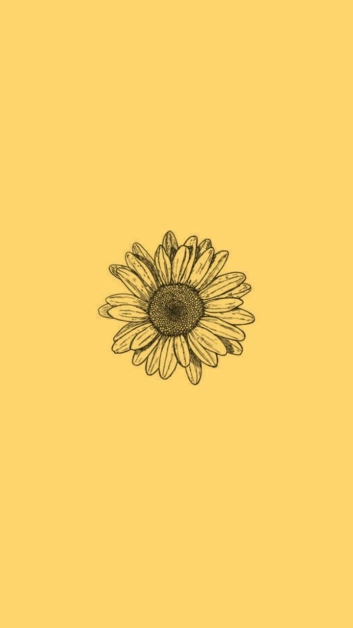 S On Yellow Aesthetic Sunflower Wallpaper Aesthetic Wallpapers