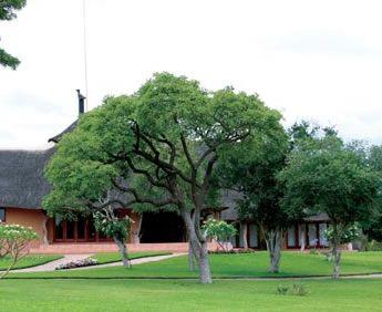 Mama Tau Private Game Lodge Conference Venue in Waterberg, Limpopo Province
