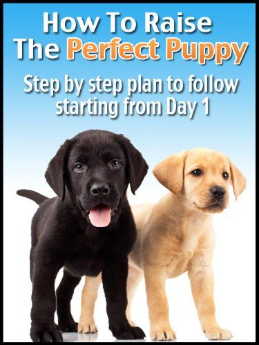 Do You Have A New Puppy? or maybe you are getting a new puppy and want to make sure you know how to properly raise your dog from day 1.This book was written to give you Action Steps to follow ASAP!Here's the breakdown that we will cover.*1.Puppy Proofing Your Home *2. Choosing The Right Food*3.Create Scheduled Feeding Times*4.The Advantages of Crate Training*5. Training Tips And Techniques*6.Simple and effectiv