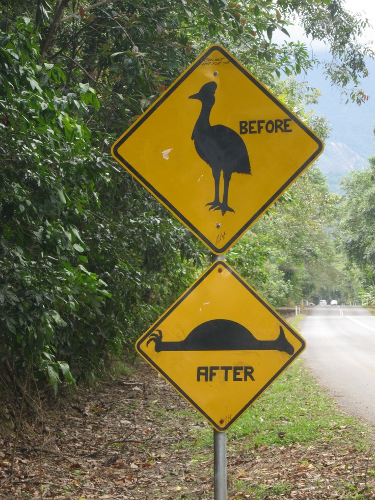 A very funny sign in the Daintree Rainforest, QLD, Australia